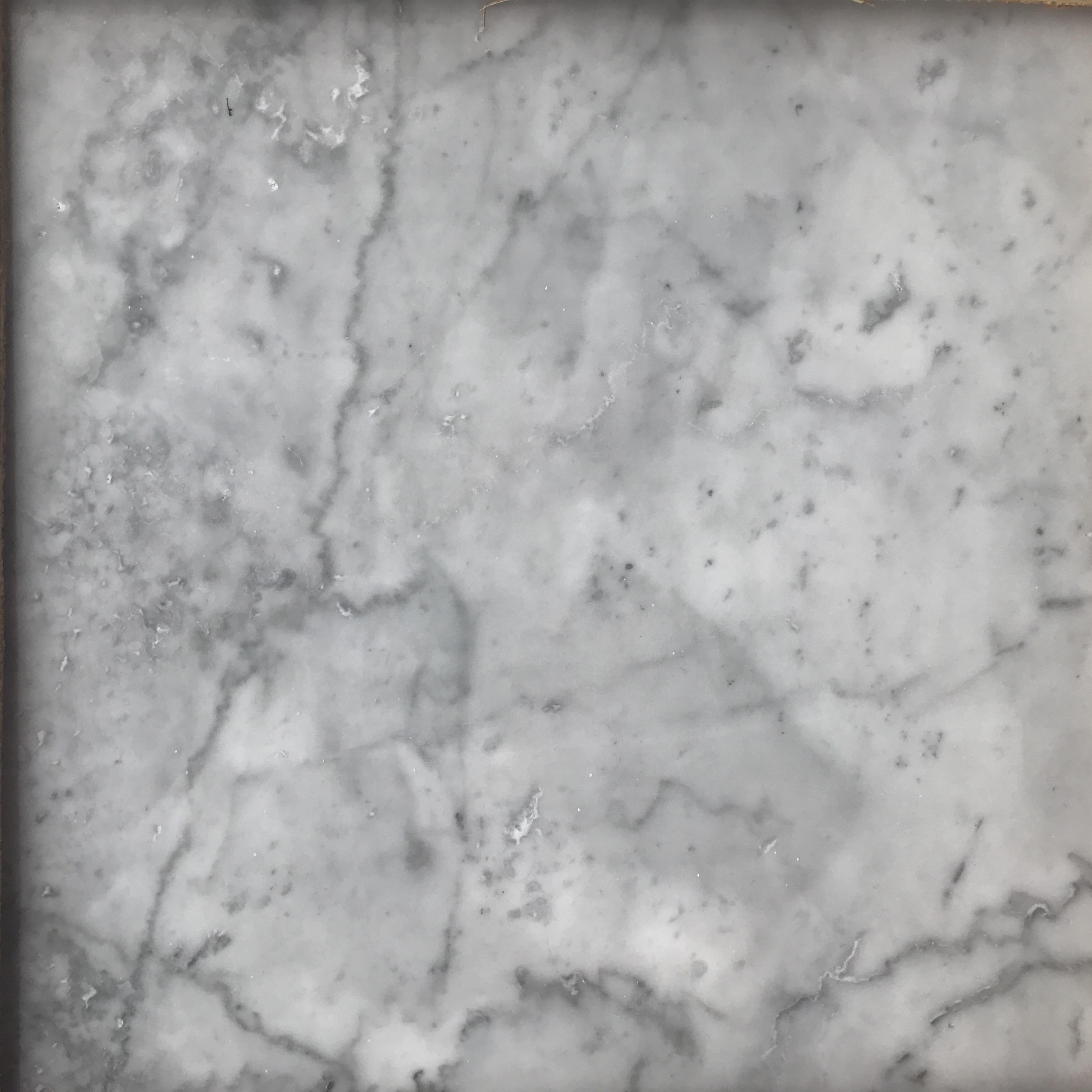 "Bianco Carrara 12"" x 12"""