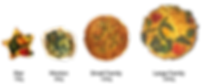 Frittata All Together 2019.png
