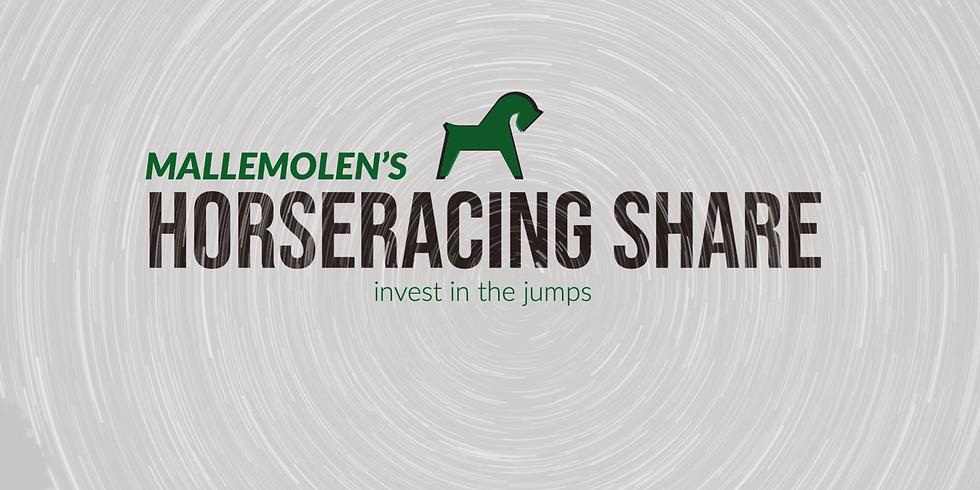 Aandeel MalleMolen Horse racing club