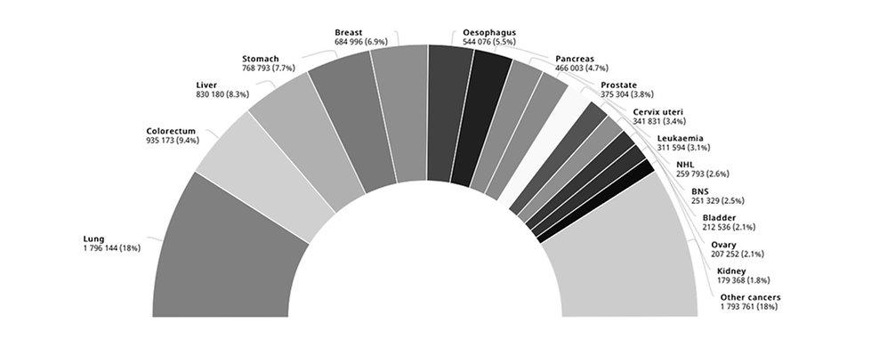 Schermafbeelding%202021-02-09%20om%2011.