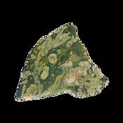 Rhyolite/Rainforest Jasper