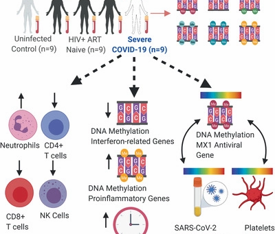 New Report: Genome-wide DNA methylation profiling of COVID-19