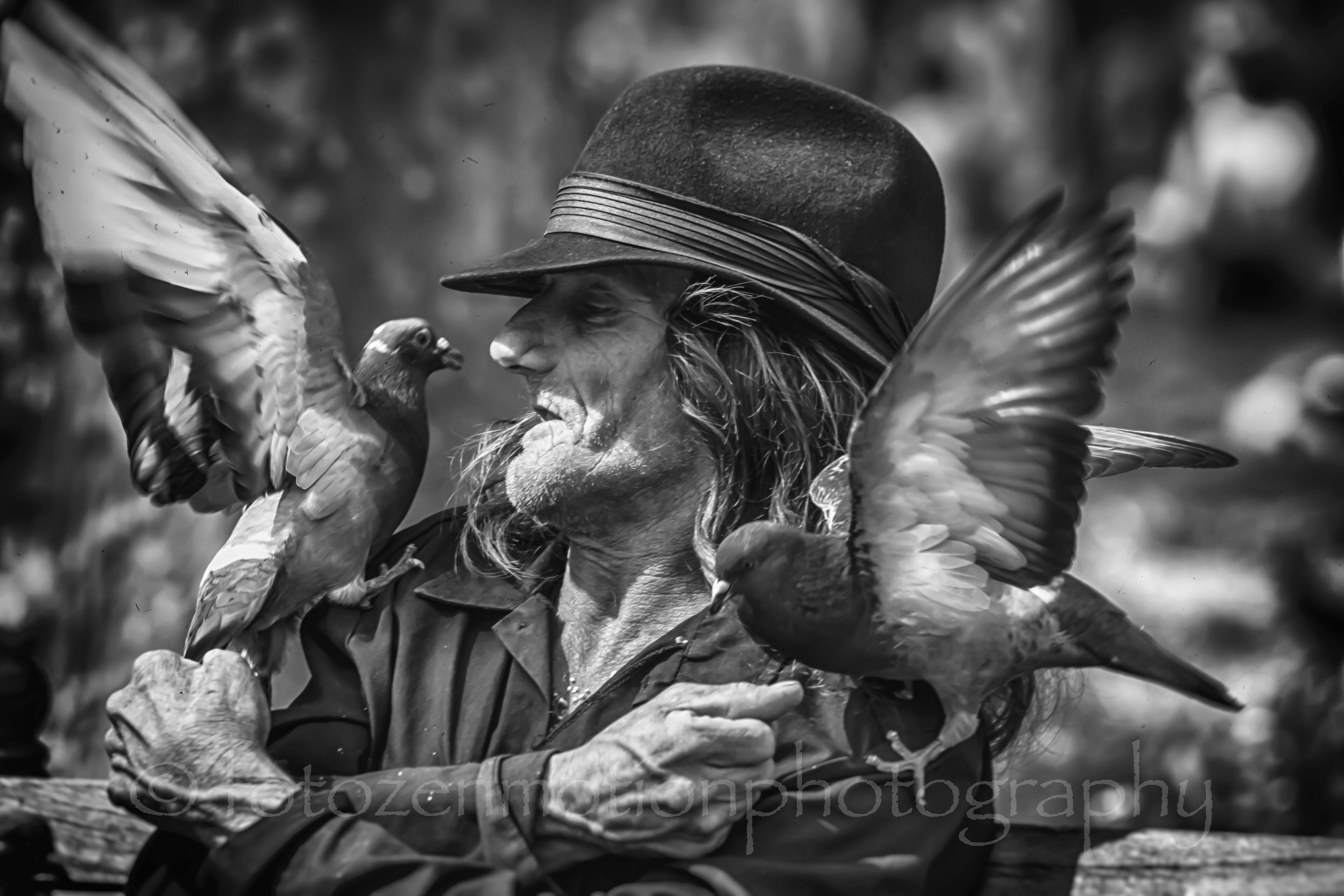 birdman -