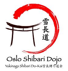oslo shibari dojo, kinbaku, bondage, shibari oslo, dojo oslo, Osada Steve, Yukimura Haruki, Yukimura, Yukinaga Max, newaza, jute, rope