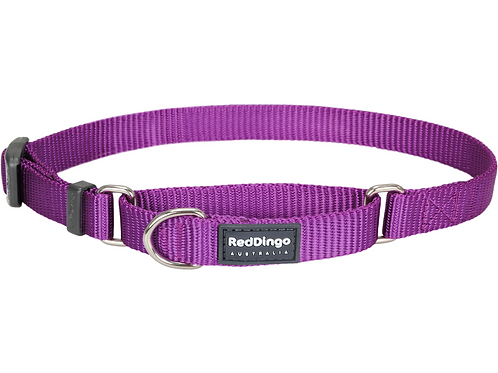 Red Dingo Half Check / Martingale Collar - Classic Purple