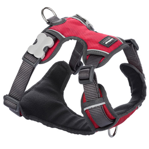 Red Dingo Adjustable Padded Harness - Red