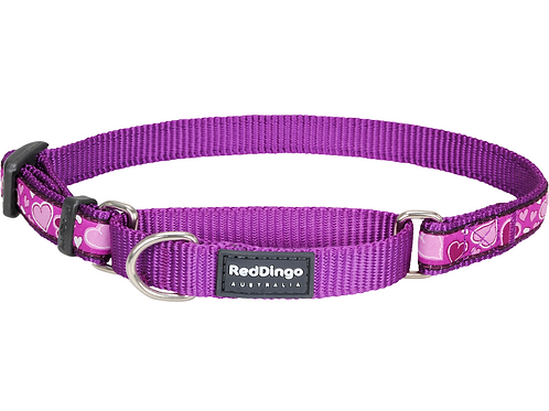Red Dingo Half Check / Martingale Collar - Breezy Love Purple