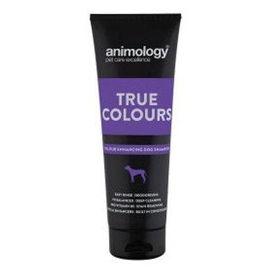 Animology True Colours Shampoo - 250ml
