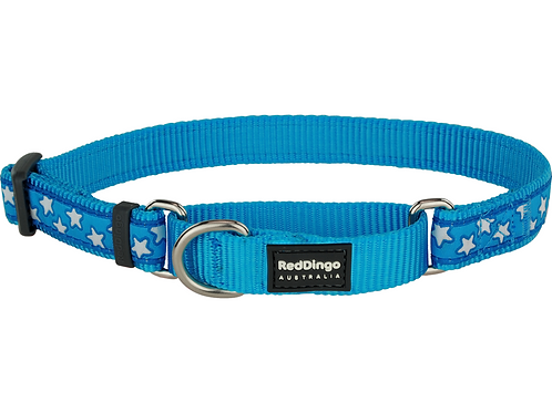 Red Dingo Half Check / Martingale Collar - Turquoise/White Stars