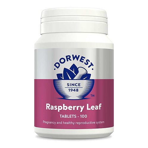 Dorwest Herbs Raspberry Leaf Tablets For Dogs