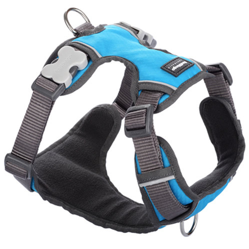 Red Dingo Adjustable Padded Harness - Turquoise