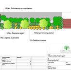 Planting plan - Tropical Garden - São Paulo - BRAZIL - 2020
