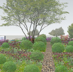 Physic Gardens - ABBEY MILLS - SW19 - 2021