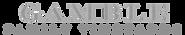 GambleParamount_logo copy.png