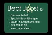 Beat Joost
