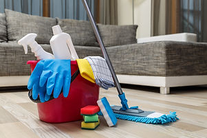 Cleaning service. Bucket with sponges, c