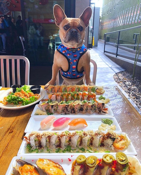 Sushi Deli 3 Frenchie