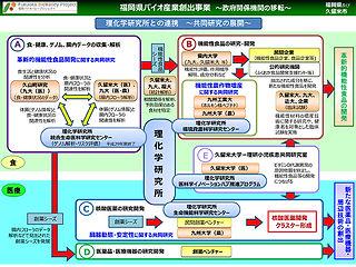 理化学研究所との連携.jpg