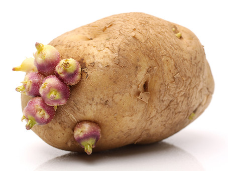 Symbols: Potato