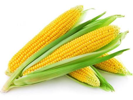 Symbols: Corn