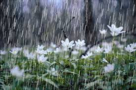 Symbol: Rain