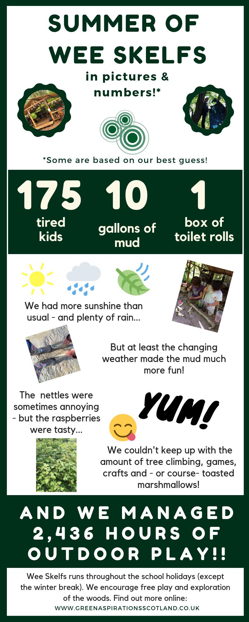 Skelfs infographic