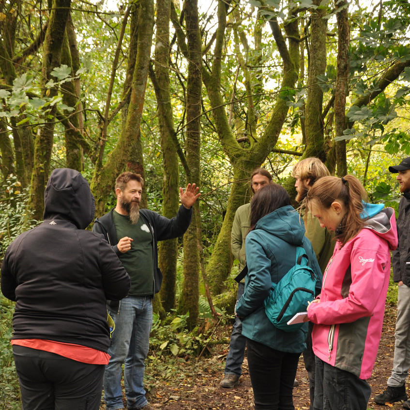 Group learning at Tree Lore