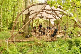 Hazel dome