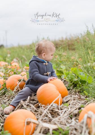 #pumpkinpatch #pumpkinspiceseason #pumpkinspiceeverything #kentnewbornphotographer #kentnewbornphotographer #medwayphotographer #hoo #rochester #rochesterphotographer #forgetmeknotphotography #autumnvibes🍁 #autumn #fallismyfavorite #newbornphotography #childrensphotographer #pumpkins #minisessions #autumnminisessions #autumnminis