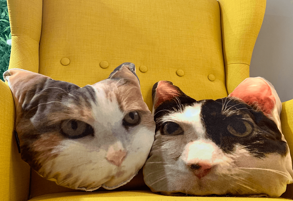 My mush on a cush pillows