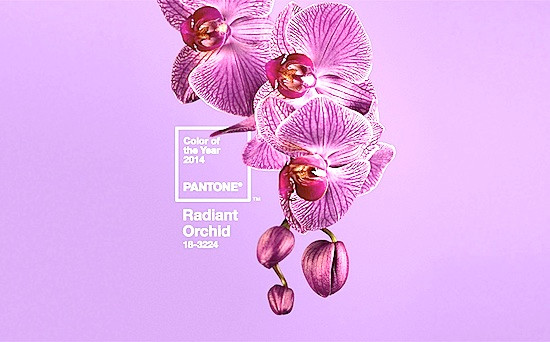 Expand your energy field by wearing Radiant Orchid you will emanate great joy, love and health!