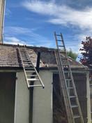 Roof Claening.jpeg