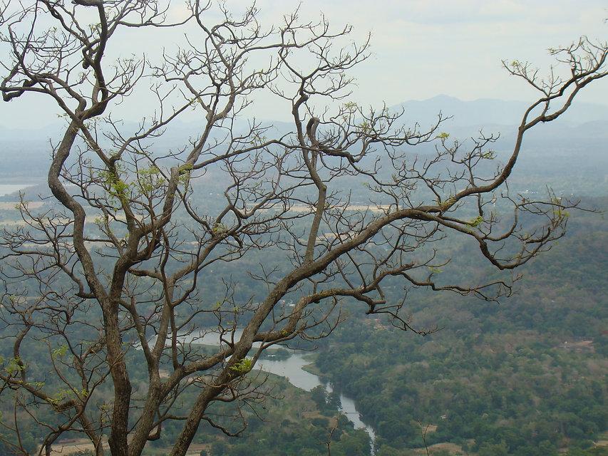 Sri Lanka, flora,fauna, ,landscapes, people, historical places