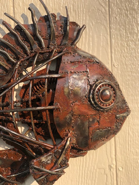 wall fish.jpg
