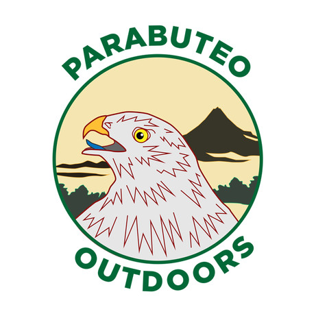 parabuteo outdoors.jpg