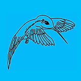 Kolibri-Verein.jpg