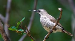 Wonderful birdwatching