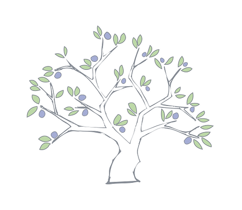 Olive tree.png