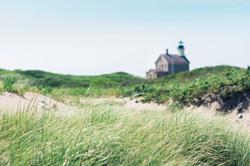 Grass on Block Island