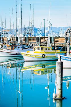 San Francisco Bay Sailboats