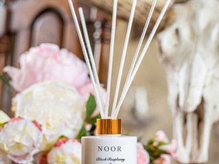 The Noor Company Launch