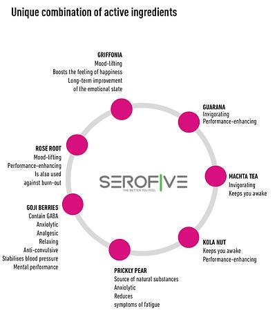 Serofive Circle.png