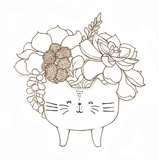Succulent Cat.jpg