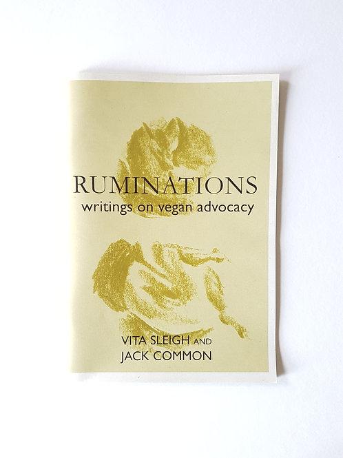 Vita Sleigh Ruminations Zine