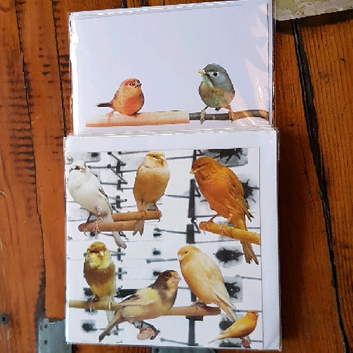 Camilla Bird cards