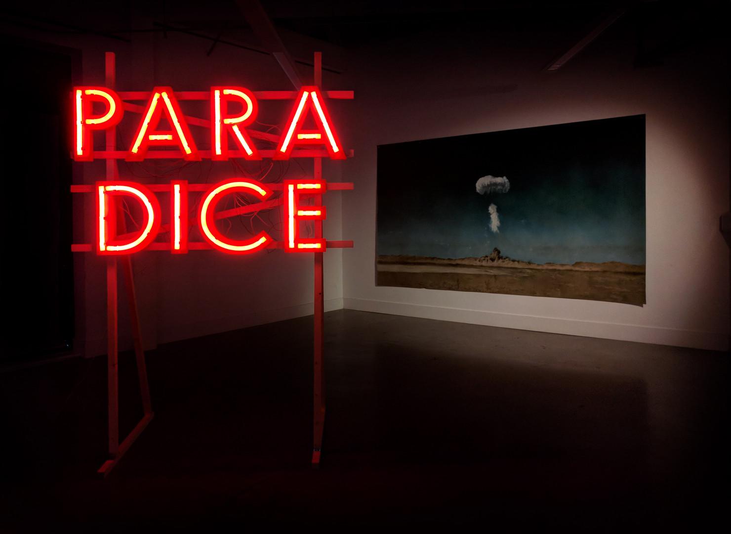 ParaDice-2017-180x130x80-wood,led neon,p