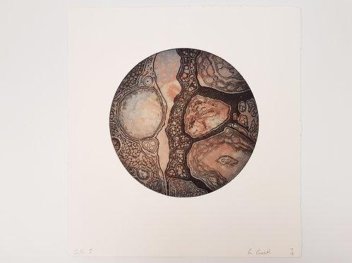 "Ian Crossland Large Print ""Cells 1"""