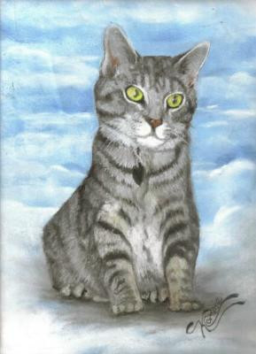 Pastel Pet Portrait of a gray tabby cat