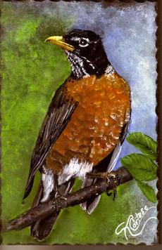 Red Robin bird acrylic painting on gray slate
