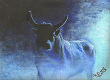 Pastel painting of a bull